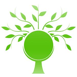 pelletheizung - gruene alternative nicht nur für energiesparhäuser